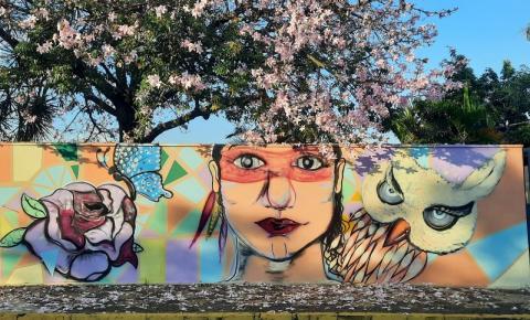 Obra do artista Fernando Siqueira em muro de escola no bairro Bosque de Versalles
