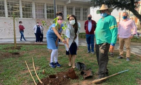 Meio Ambiente realiza plantio de árvores em homenagem aos profissionais da saúde